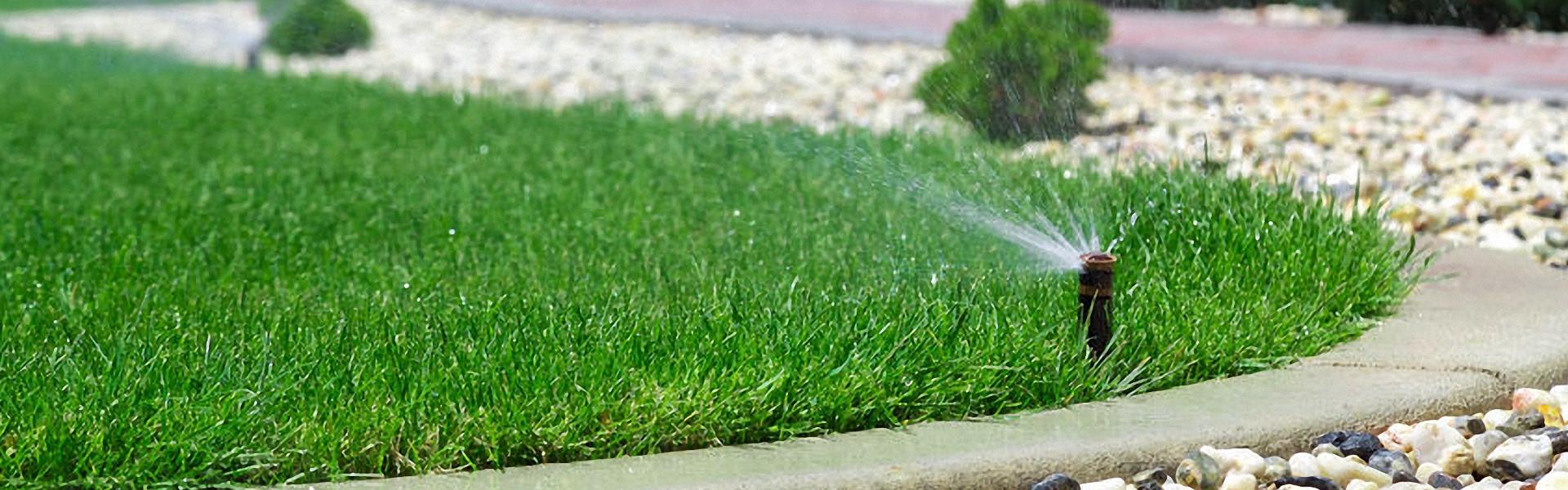 Gartenpumpen zur Bewässerung